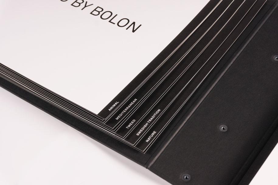 Bolon_case_04